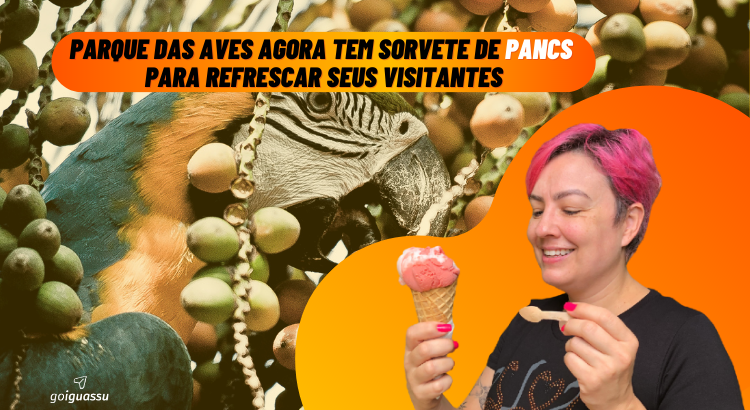 Parque das Aves agora tem sorvete de PANCs para refrescar seus visitantes